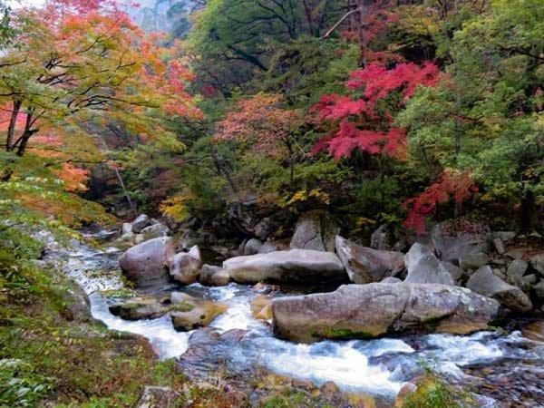 御岳昇仙峡フリー散策&ぶどう狩りイメージ