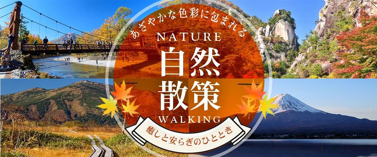 自然散策日帰り旅行