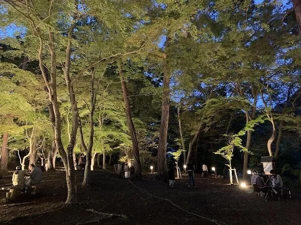 月の石もみじ公園ライトアップ