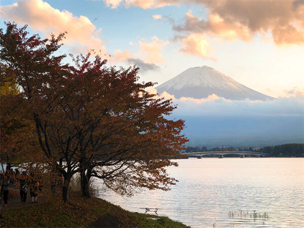 河口湖紅葉まつりと富士山
