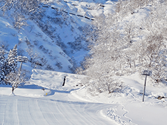 名古屋朝発バス宿泊付ツアーへのリンクボタン