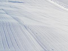 名古屋朝発スキーバスへのリンクボタン