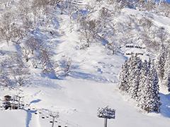 名古屋夜発バス宿泊付ツアーへのリンクボタン