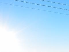 関西朝発日帰りツアーへのリンクボタン