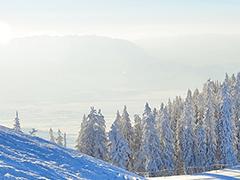関西夜発宿泊付ツアーへのリンクボタン