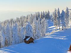 関西マイカー宿泊付ツアーへのリンクボタン