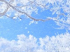 朝発バス+宿