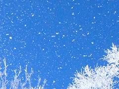 JR新幹線日帰り
